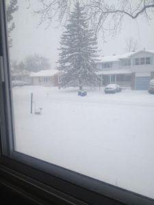 snow6th